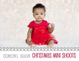Christmas minis